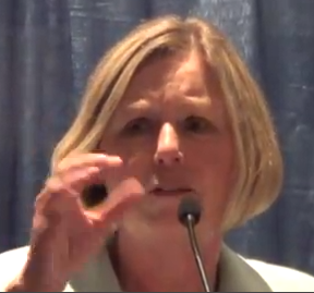 Grand Junction Area Chamber of Commerce President Diane Schwenke isn't paid to promote the interests of are workers, even a little bit. (Photo Credit: YouTube)