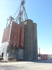 The old Mesa Feed building on south 7th Street in LoJo is being rebuilt into a climbing and trampoline amusement park.